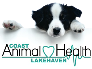 Coast Animal Health Logo